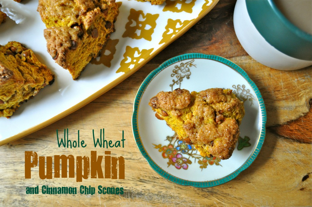 Whole Wheat Pumpkin Cinnamon Chip Scones | Once Upon a Recipe