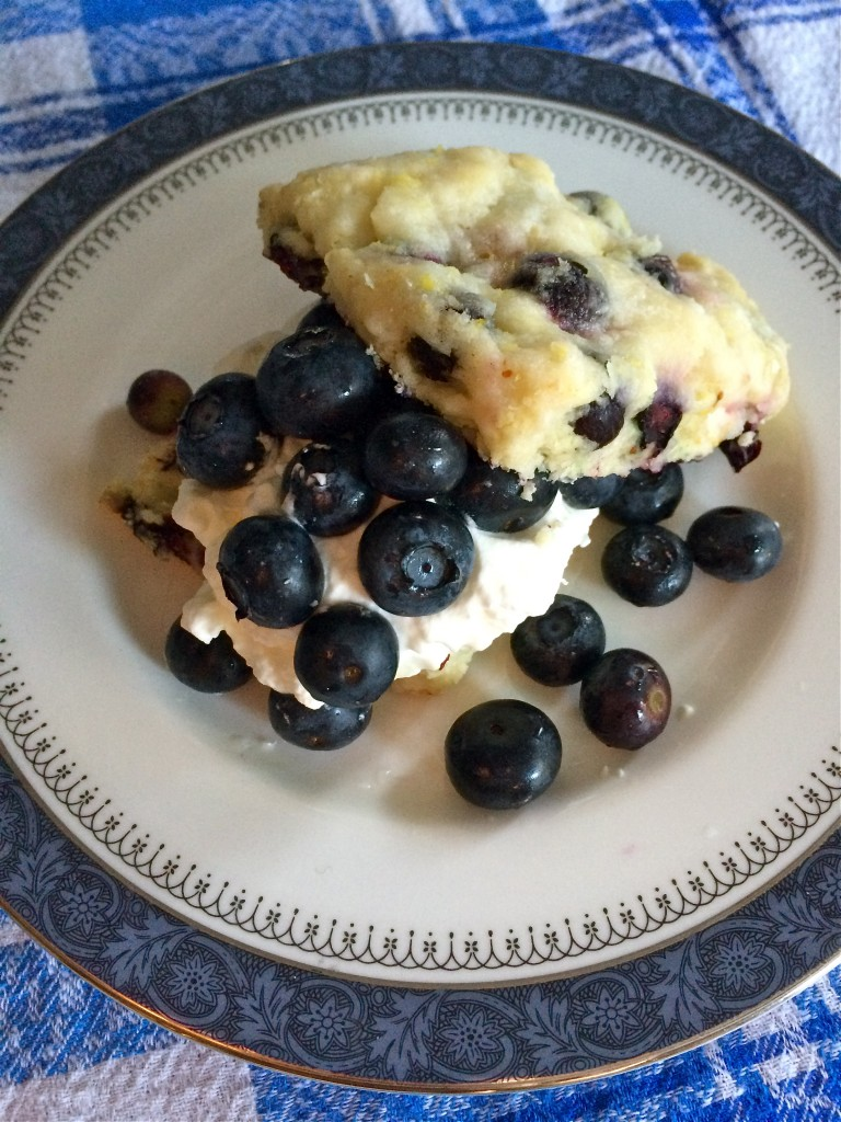 Blueberry Lemon Shortcakes | Once Upon a Recipe